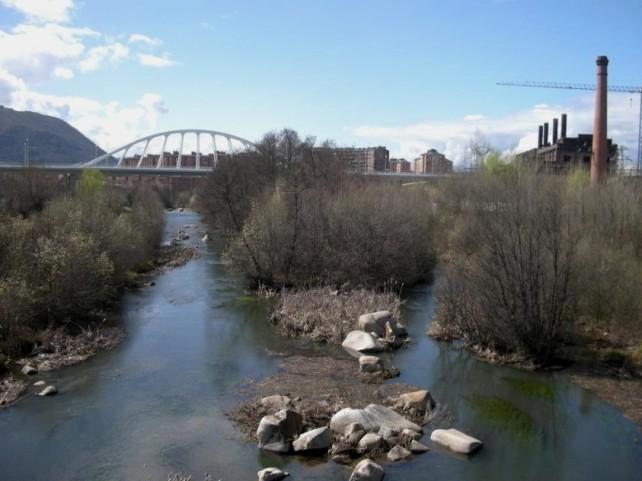 Limpieza de la ribera de los ríos Sil y Boeza, actividades y picnic