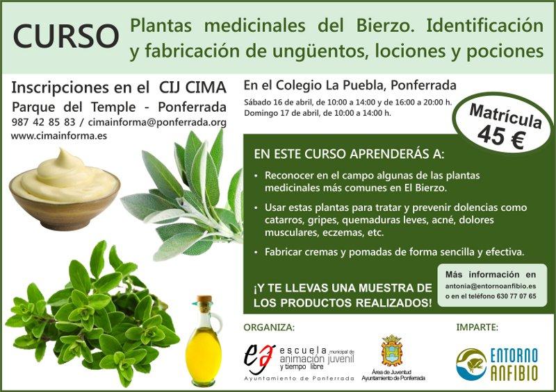 Cartel Curso Plantas Medicinales del Bierzo G
