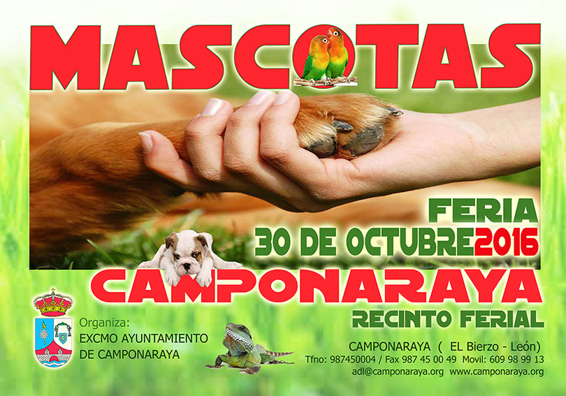 mascotas-2016-camponaraya