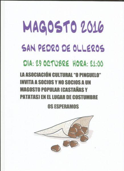 magosto-san-pedro-20016