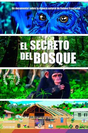 V edición del Festival Villar de Los Mundos. programación 5