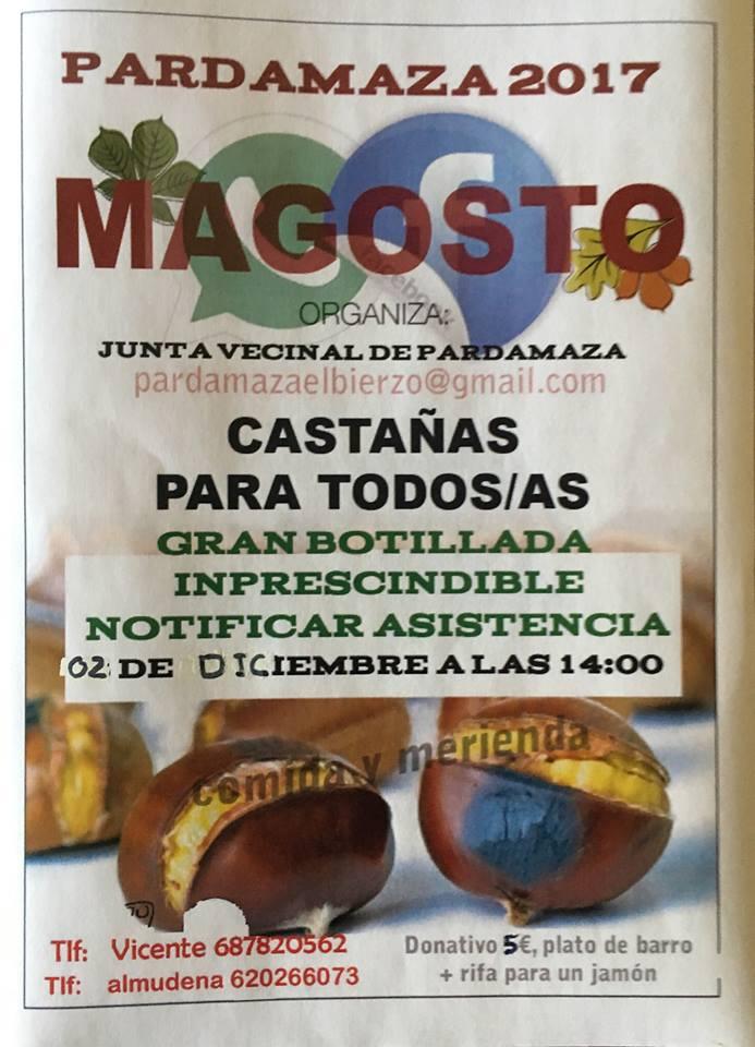 Magosto en pardamaza 2017