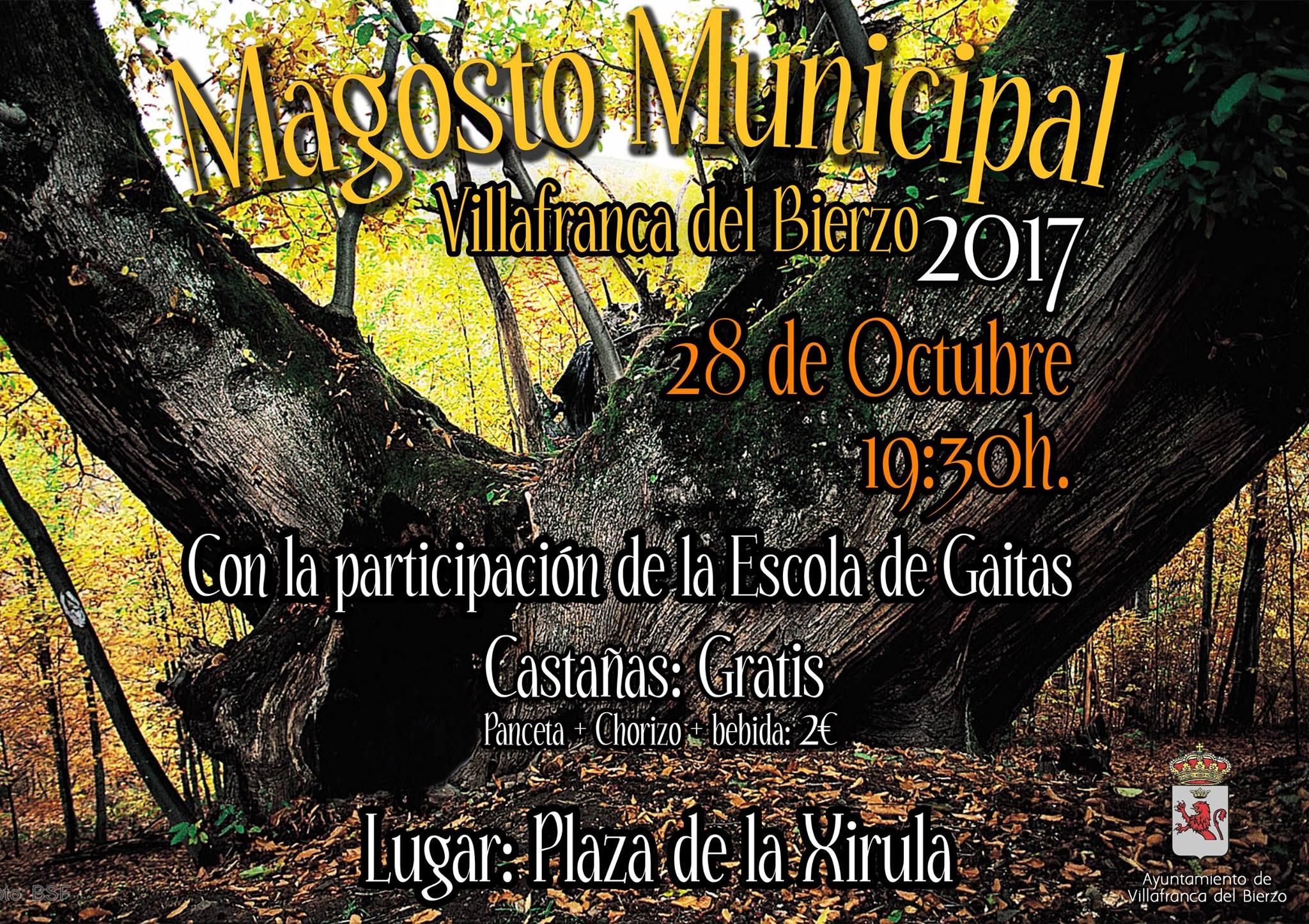 Villafranca organiza su Magosto Municipal 2017 2