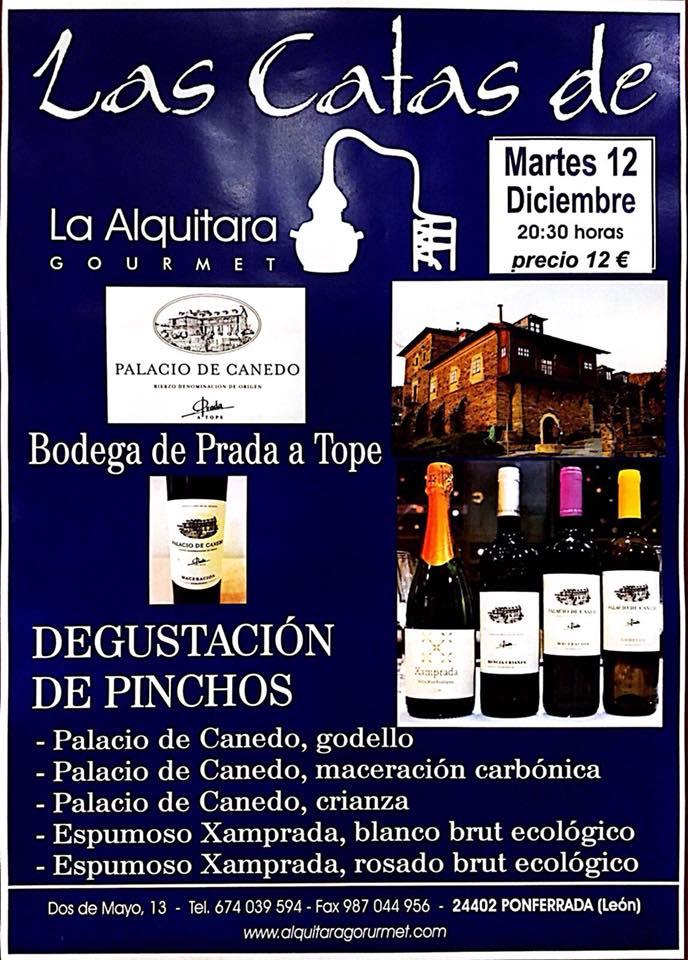Cata de vinos del Palacio de Canedo