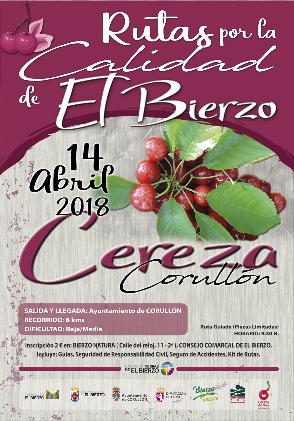 Las rutas de la calidad del Bierzo comienzan con un paseo por los Cerezos en flor 2