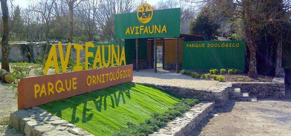 Sitios para visitar con niños en Galicia 17