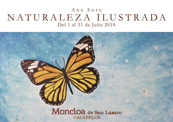 """Exposición """"Naturaleza ilustrada"""""""