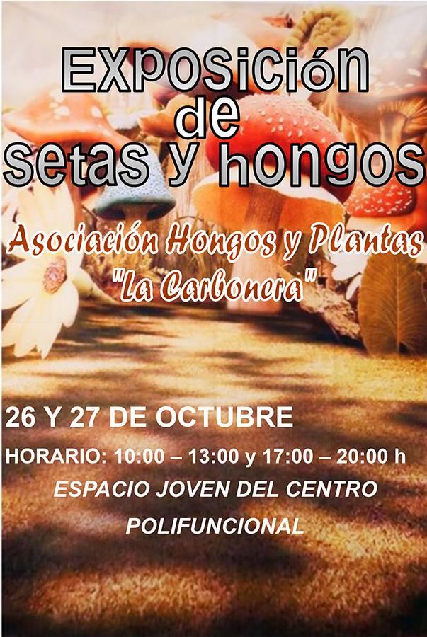 Exposición de setas y hongos 4