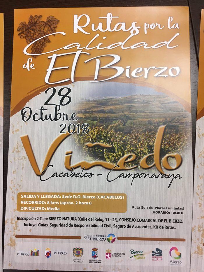 Planes en Ponferrada y El Bierzo para el fin de semana. 26 al 28 de octubre 2018 29