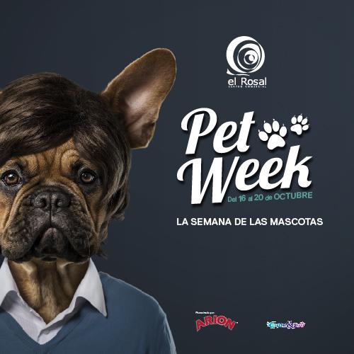 Planes para el fin de semana en Ponferrada y el Bierzo 19 al 21 de octubre 2018 5