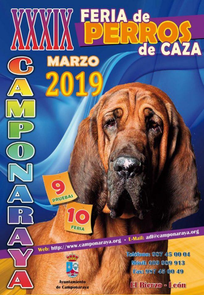 Planes en El Bierzo para el fin de semana. 8 al 10 de marzo 2019 6