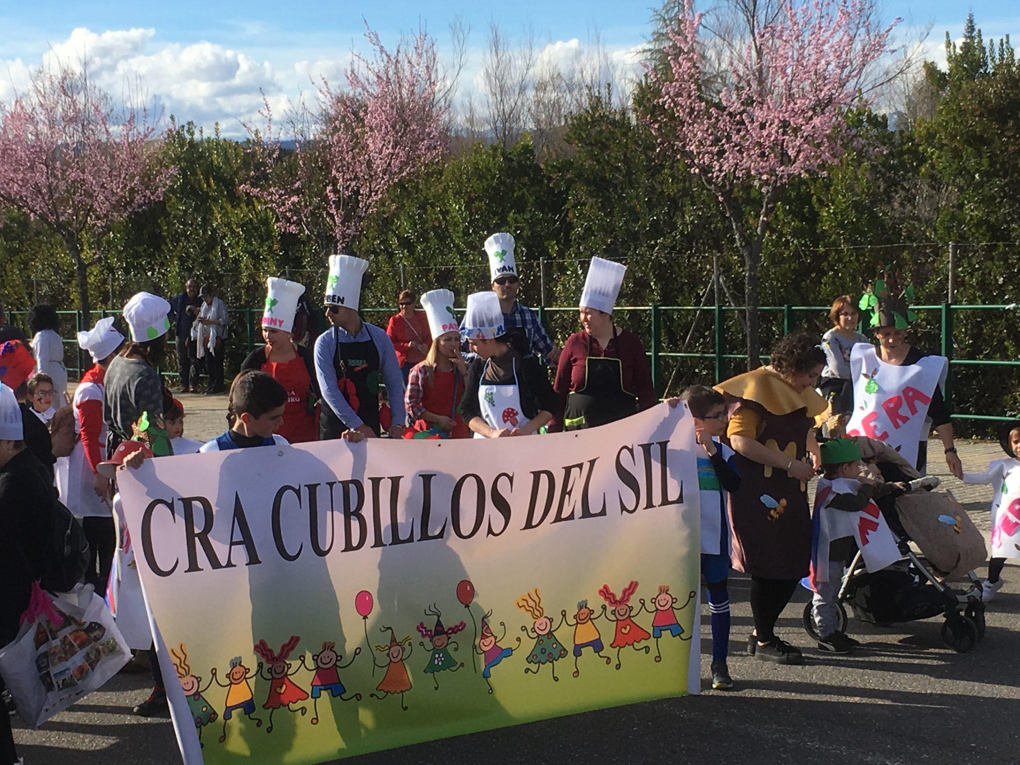 Desfile de Carnaval Cubillos del Sil 2019 - Álbum de fotos 56