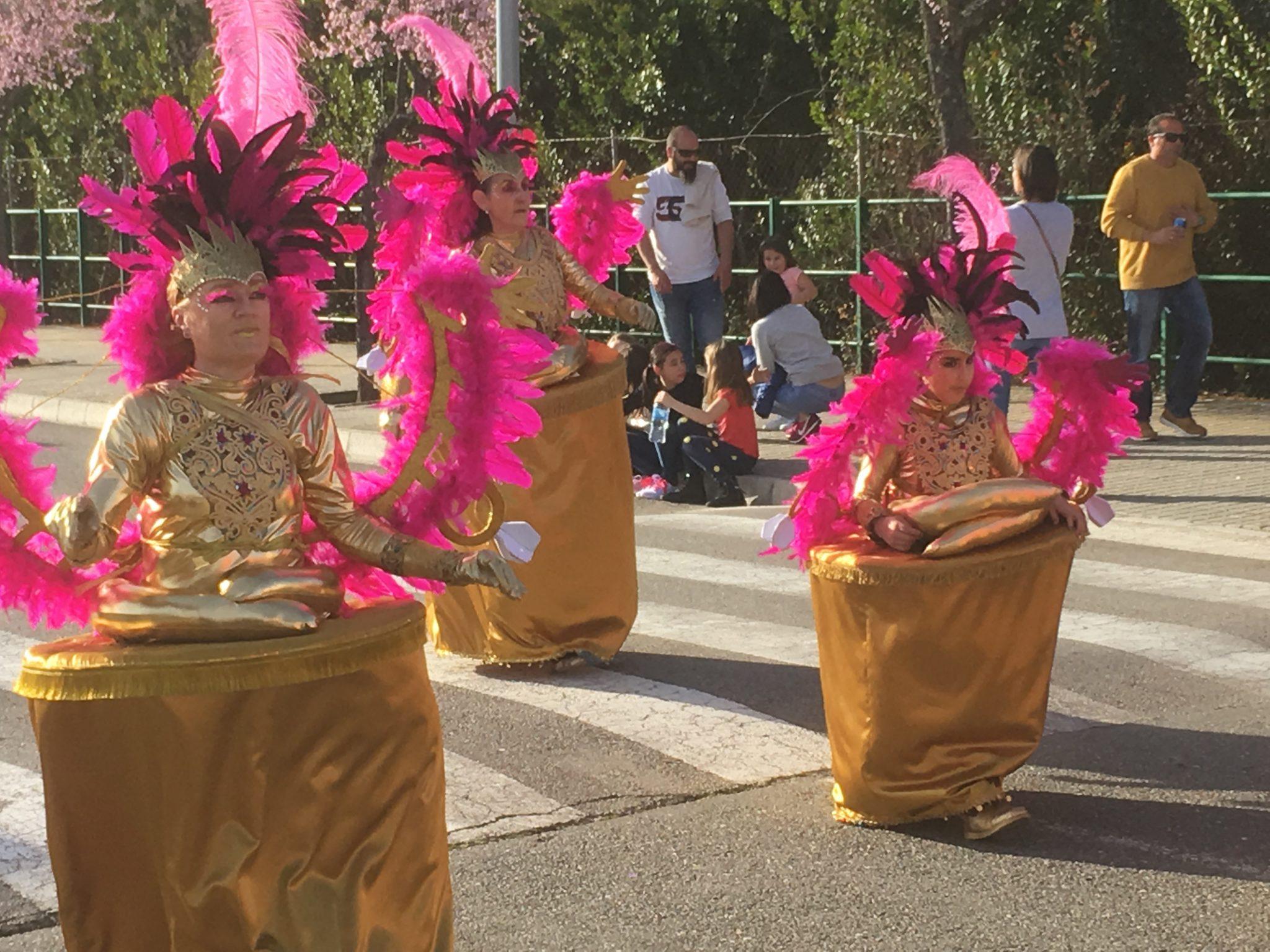 Desfile de Carnaval Cubillos del Sil 2019 - Álbum de fotos 19