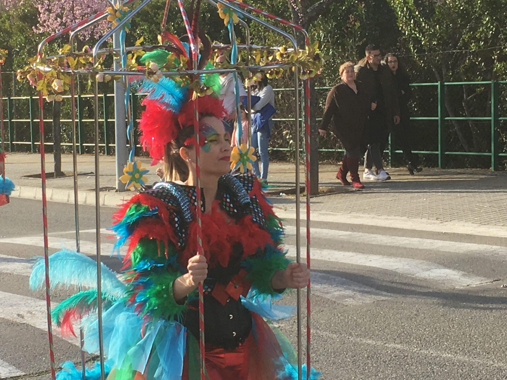 Desfile de Carnaval Cubillos del Sil 2019 - Álbum de fotos 17