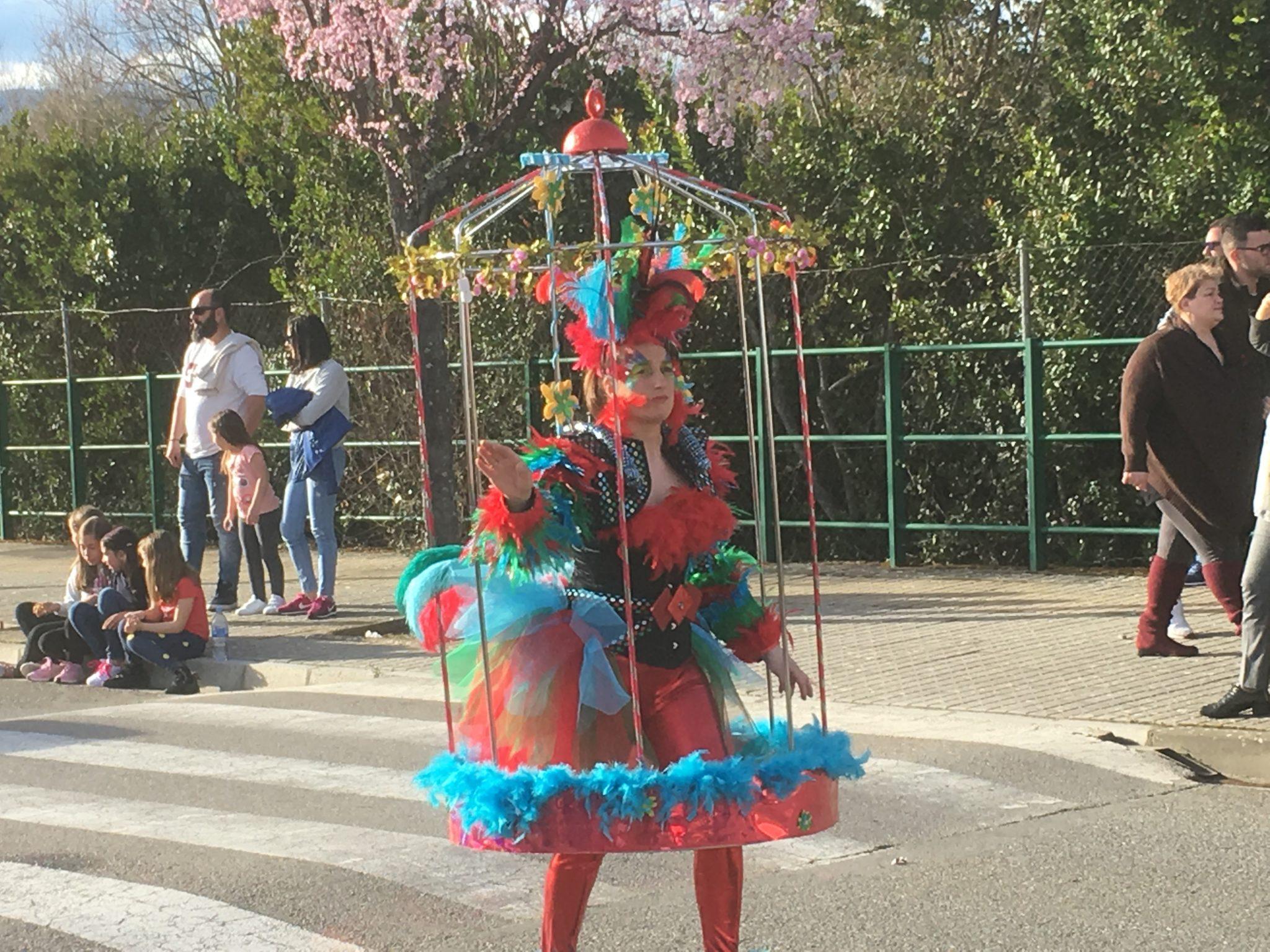 Desfile de Carnaval Cubillos del Sil 2019 - Álbum de fotos 16