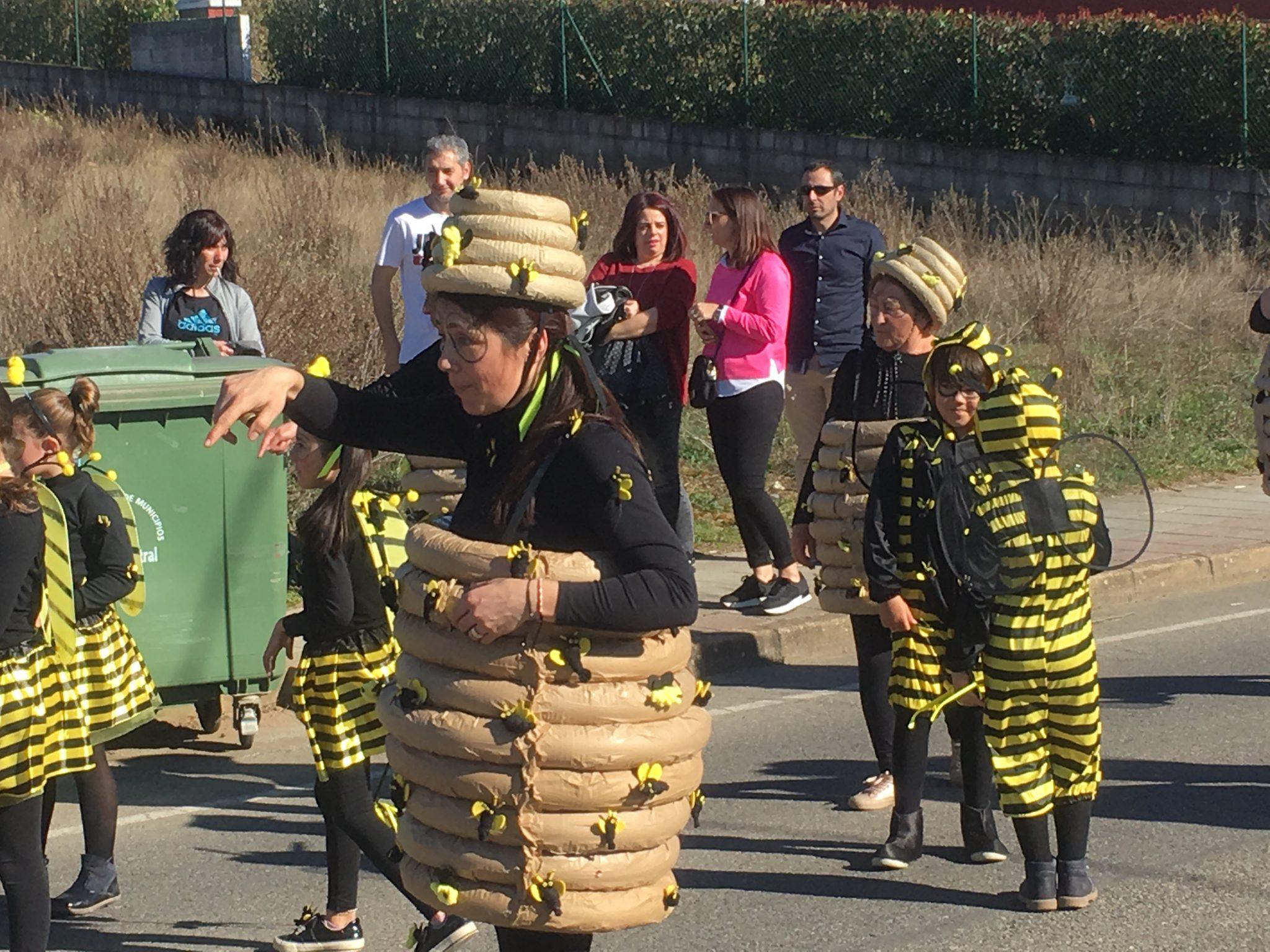 Álbum de fotos Carnaval Cabañas Raras 2019 27