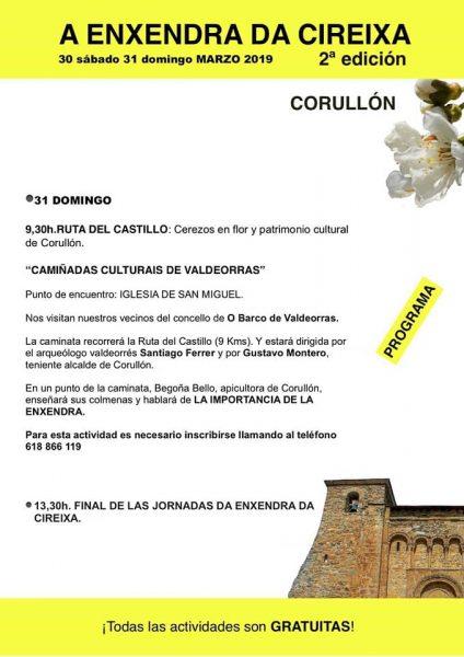 """Corullón celebra la """"2ª Enxendra da cireixa"""" con una ruta para disfrutar de la floración de los cerezos y actividades paralelas 4"""