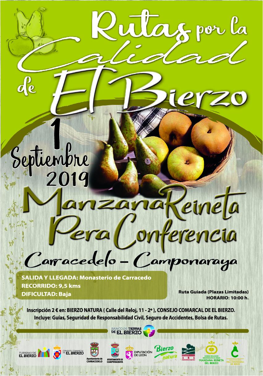 La ruta por la calidad del Bierzo regresa con la manzana reineta y la pera conferencia como protagonistas 2