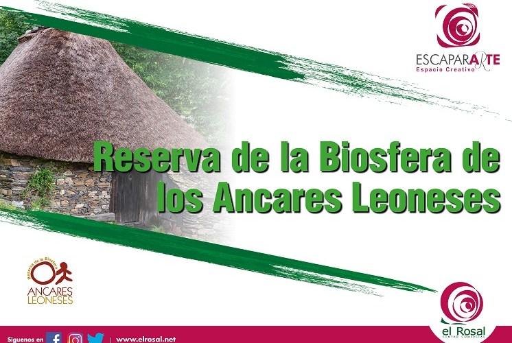El centro comercial El Rosal muestra en una exposición las mejores imágenes de la Reserva de la Biosfera de los Ancares Bercianos