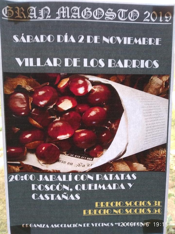 Gran Magosto en Villar de los Barrios. Sábado 2 de noviembre 2019 2