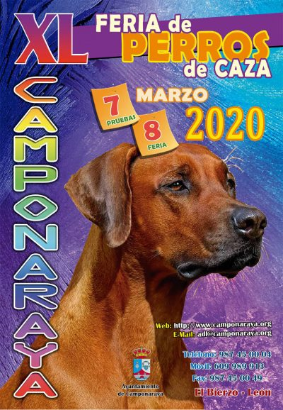 Planes de ocio en El Bierzo. 6 al 8 de marzo 2020 3
